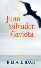 Juan Salvador gaviota (Punto De Lectura) por Richard Bach