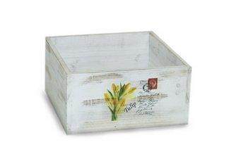 Box Tulip (Korb Tulip)