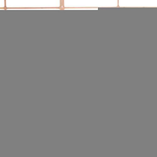 YUNYUE - heiß auf Baumwolle Software großen Kissen - Dinosaurier der roten Einhorn Kissen plüsch Ideen Geschenk Orange Dinosaurier