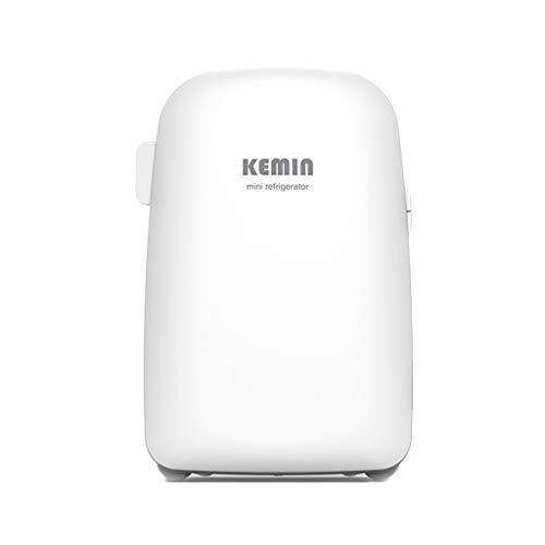 Refrigerador Coche Mini hogar portátil pequeño refrigerador