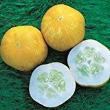 Kings - Graines de concombre citron Cristal - 30 graines