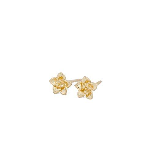 ohrstecker-mini-azaleen-in-gelbgold-18kt-panajee