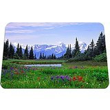 Alpine Wildflowers Rocky Mountains British Columbia Flowers - Gaming Mouse Pad - Mouse Pad - 10.24