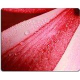 Luxlady Gaming Mouse ID: 40531280sfondo astratto da rosa e rosso tempio fiore