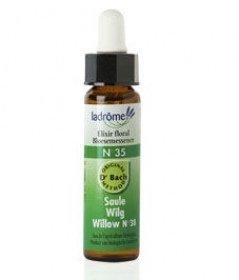 La drome provencale - Elixir floral du dr bach willow (saule)