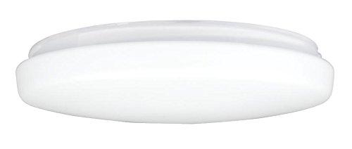 Westinghouse Lighting Westinghouse Lampenschirm 19,7 cm aus satiniertem Glas, Trommelform, weiß, 22.2 x 22.2 x 5 cm -