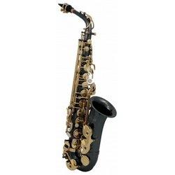 Roy Benson RB700603 Eb-Alt Saxophon MOD.AS-202K schwarz lackiert, inkl. leichtem Rechtecketui