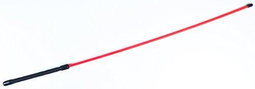 Roter Rohrstock aus Acrylglas ❘ BDSM Shop ❘ Spanking SM Rohrstock Test