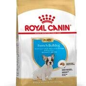 Royal Canin - Croquettes Chiens - Bouledogue Français - Junior jusqu'à 12 mois - 1 Kg