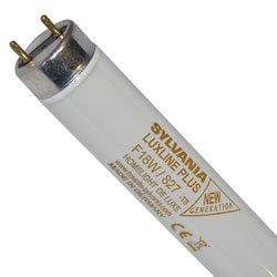 1x Sylvania 0000569 Lampe F 15W T8 G13 840 Cool White Luxline Plus Leuchtstoffröhre 450mm 26mm Leuchtstofflampe Röhre F15W/T8/840 950 Lumen (Mü1215)