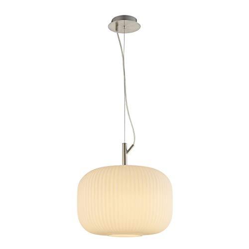 Nino Anica Suspension 1 ampoule. Anica 31053501