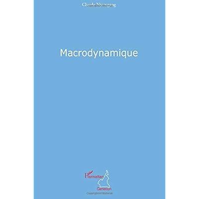 Macrodynamique