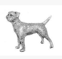 Brosche, Motiv: Border Terrier, aus Zinn, für Schals, Krawatten, Hüte, Mäntel oder Taschen, in Geschenkbox -