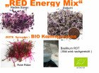 350 g BIO Keimsprossen Mischung Red Energy Mix Keimsaat Samen