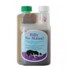 billy-no-mates-a-herbal-supplement-to-naturally-effectively-repel-fleas-ticks-and-mites
