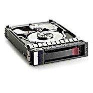 HP 454273-001 - 1TB 7200Rpm LFF SATA 3,5 Inch - Hot Plug - Warranty: 1Y - Sata 3,5 Hot-plug