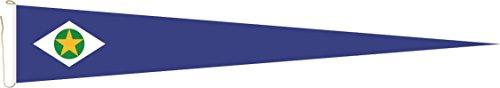 Haute Qualité pour U24 Long Fanion Mato Grosso Drapeau 250 x 40 cm