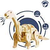 ROKR Robotic Dinosaur Toys- Model Woodcraft Construction Kit-Robot Toy Set- Best Educational Gifts for Boys and Girls 6 7 8 9 10 11 12 13 14 15 Year Old and Up (Dinosaur Model Kit)