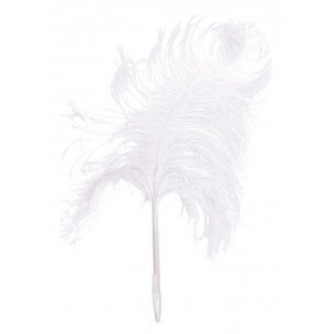 maison-martin-margiela-feather-pen-ostrich-white-ligne-13