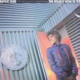 Wildest wish to fly (1983/84) [Vinyl LP]