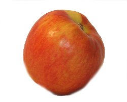 Fruchtknall Apfel Jonagold 1 kg