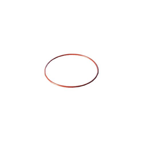 DURAN 29 222 61 O-Ring, Rot, FEP-ummantelt, 200 DN passend für Flansch (222 O-ring)