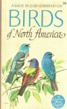 birds-of-north-america-a-guide-to-field-identification