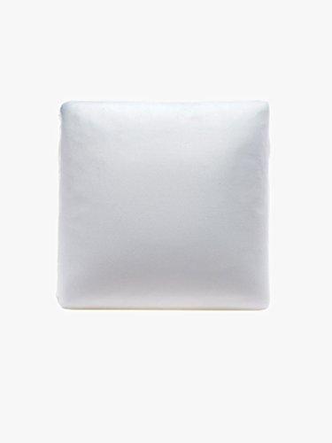 The White Willow mémoire coussin en mousse carré décoratif douce jeu de 2 pièces d'oreiller intérieur Articles cadeaux 16 \\