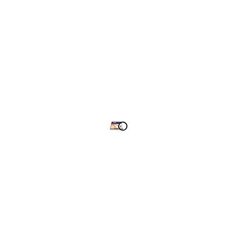 KIT DISQUES LISSES POUR GSXR600 2001