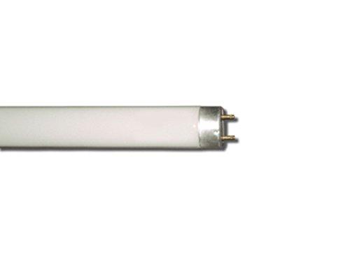 l-fluor-2g11day-036230