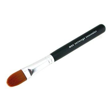 erage Concealer Brush (Max Hair Brush)