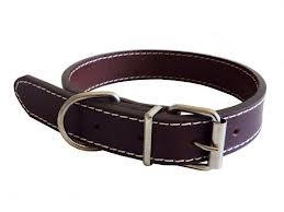 The Paws Traditional Plain Leather Collar, S, 40 cm, Brown 1