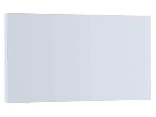 Vitalheizung 850 Infrarot-Heizpaneel