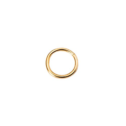 PinzhiEdelstahl Kleine Ohrstecker Nahtlose Nase Ring Hoop (gold,10mm) (10 Mm Juwel)