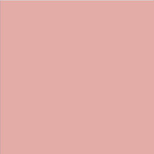 L'Oréal Color Riche Matte Addiction Lipstick, 103 Blush in a Rush