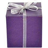Mypresentforyou Purple Gift Boxes with Silver Organza Ribbon, Set of