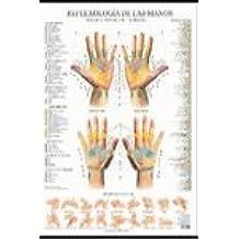 Reflexología De Las Manos - Poster (Posters (terapias))