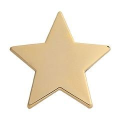 Star Emaille Badge Schule Akademischer, gold (Badge Awards Gold)