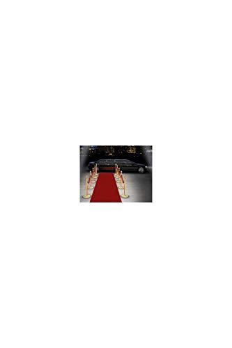 Celebridades alfombra roja 15m