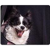 luxlady Gaming Mousepad Zubehör Hund Chihuahua klein schwarz und weiß Chihuahua Hund Getragen Von Ihrem Besitzer in einem Hund Tasche Bild-ID 43437865
