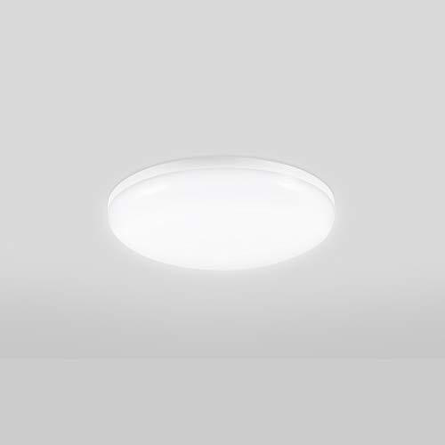 Viugreum 12W Plafón LED Techo, 1000LM Lámpara LED de Techo, Reemplaza 60W...