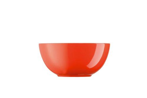 Runde Schüssel-form (Arzberg 9700-70186-0621-1 Form Tric Schüssel rund 21 cm, hot)