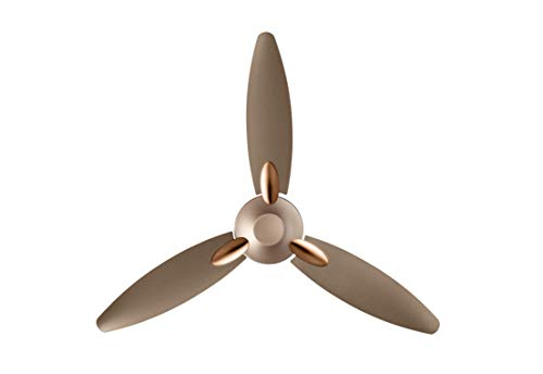 Usha Bloom Daffodil Goodbye Dust Ceiling Fan 1250mm, Sparkle Golden and Brown