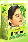 Hesh - Polvo de Hierbas Brahmi - 100 gramos