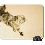 acrobat-cat-mouse-pad-mousepad-cats-mouse-pad