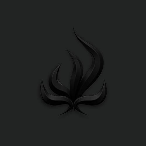 Catalogo prodotti black flame 2019 IoGiardiniere.it Guida