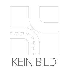 Preisvergleich Produktbild Reinz 02-52935-01 Dichtungssatz,  Zylinderkopf