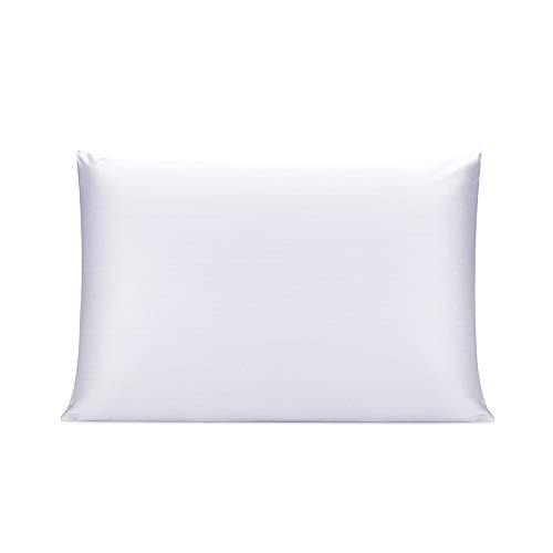 OLESILK 100% Mulbery Silk Pillowcase with Hidden Zipper for Hair and Skin, Both Sides 19mm Charmeuse...