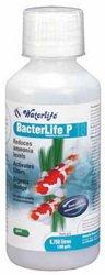 Life Waterlife Bacterlife - Filtro batterico per Acquario