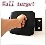 Zantec Taekwondo Karate kick Boxing MuayThai Wing Tsun Straight Punch Wall Pad Target